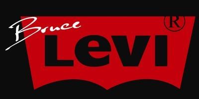 Artist Spotlight: Bruce Levi