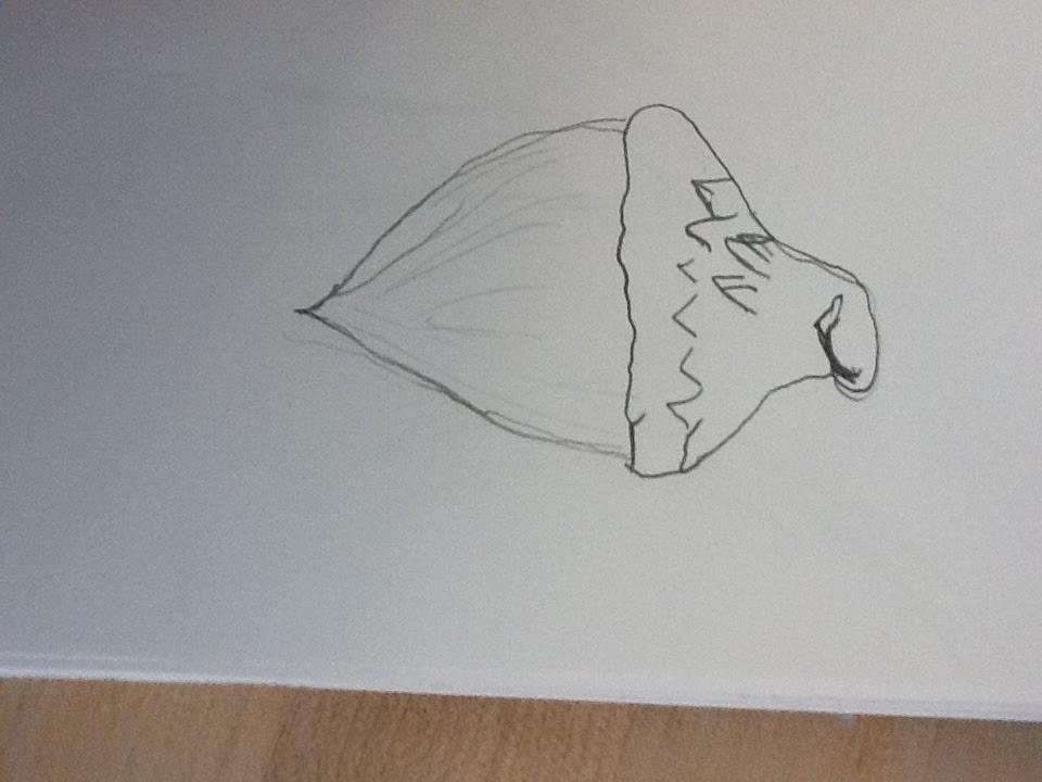 Contour Line Drawing Picasso : Picasso s swag art contour lines