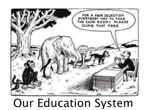 Our Education System - This How I Feel Sometimes In School