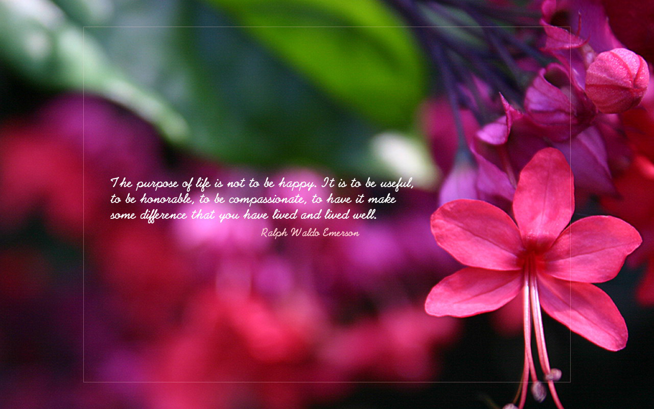 u me aur hum sweet love quotes wallpapers