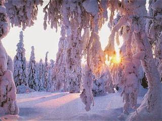 zima-snieg