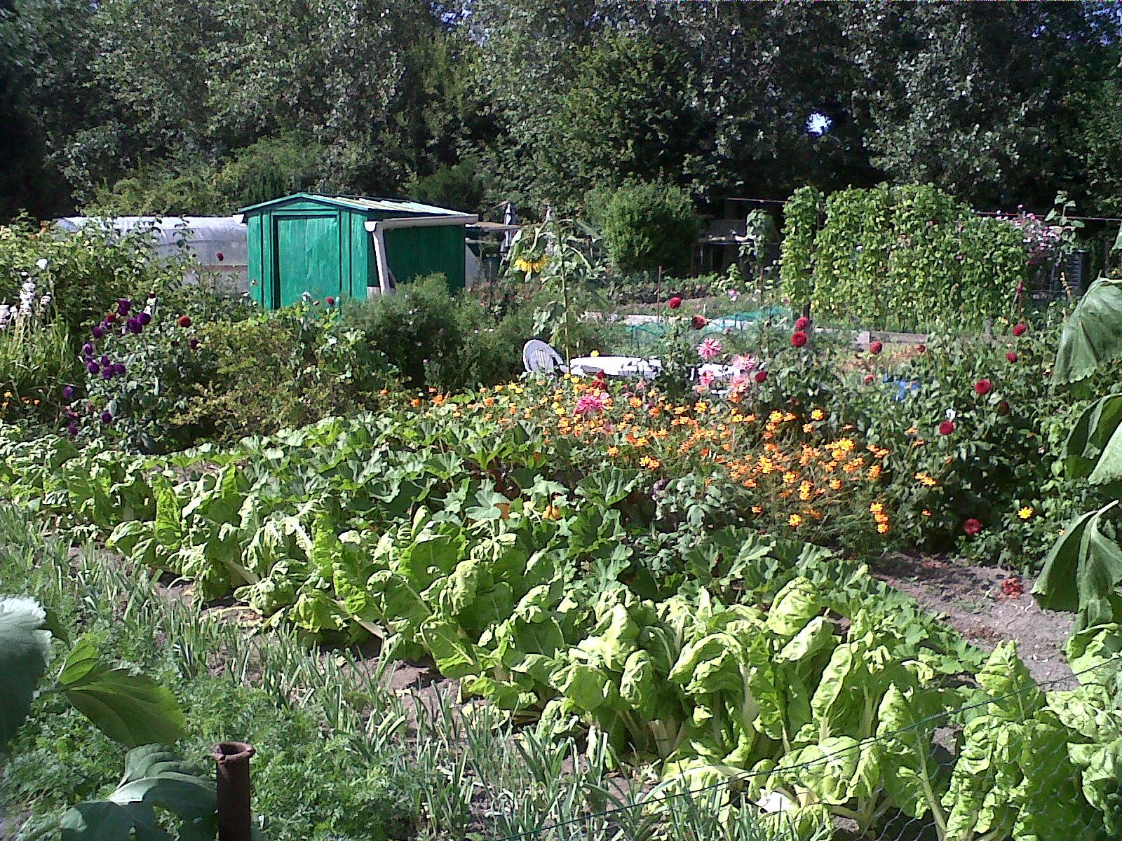 Le mastino les jardins familiaux de senlis for Jardin familiaux