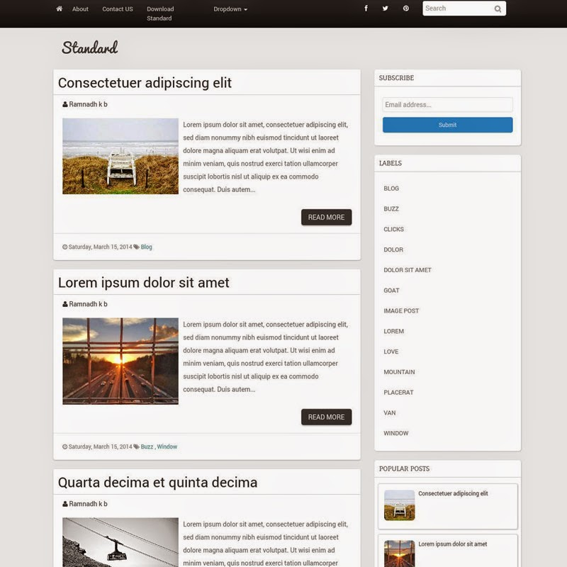 Standard Free responsive blogger template