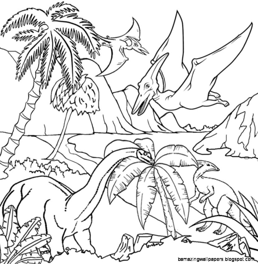 Tropical Rainforest Drawing With Color