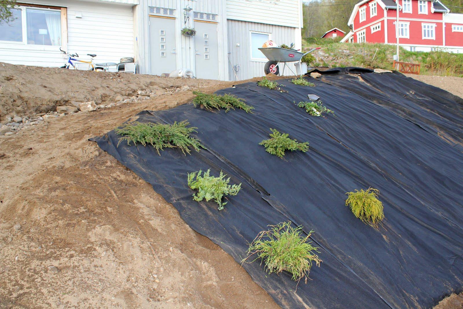 bruke elvestein i skråning