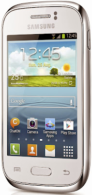 Samsung Galaxy Young (Single SIM)