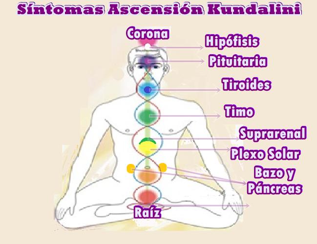 Todas estas experiencias inusuales son síntomas de la Ascensión Kundalini.