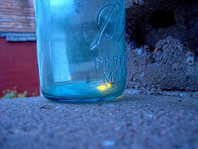 Fireflies in a jar by jamelah e.
