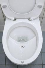Allievo agente galilei il riciclaggio inizia in bagno for Vater ecologico