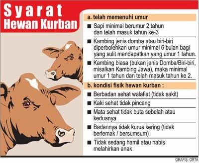 Syarat Hewan Qurban