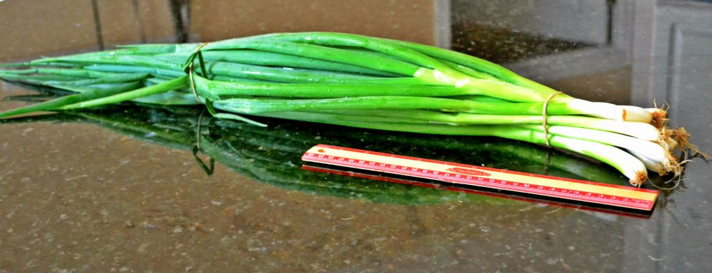 corn and potato chowder spicy corn chowder bacon corn chowder 2 summer ...