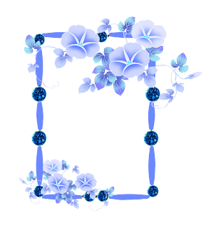 Frames with Flowers