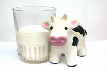 leche de vaca calcio