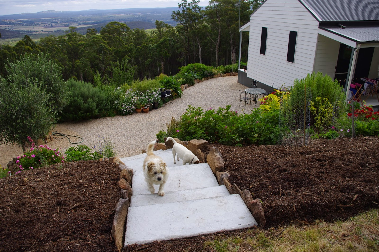 weekly notes from fernglade farm a permaculture and organic small