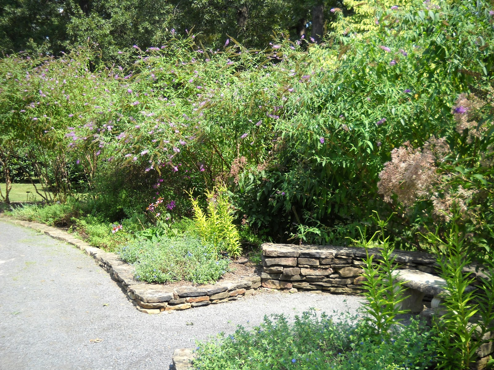 Divers and sundry butterfly garden for Garden trees memphis