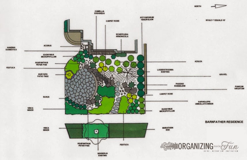 Sketch of native, drought tolerant front yard :: OrganizingMadeFun.com