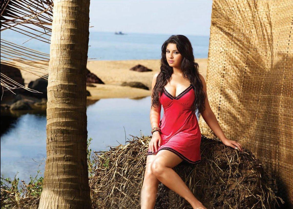 http://3.bp.blogspot.com/-SKbjK_X1WeQ/TvAjqju3tUI/AAAAAAAAAAs/jruzURU0f_g/s1600/actress_ccl_2012_calendar_wallpapers_18_shriya_saran+%25283%2529.jpg