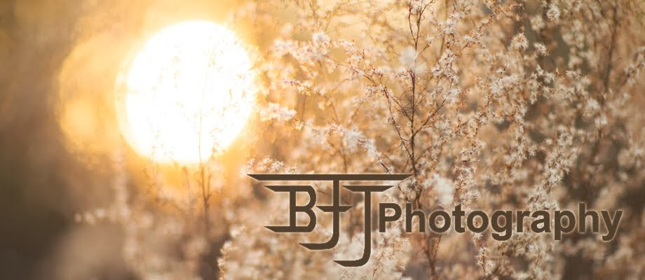 BFJ Photography