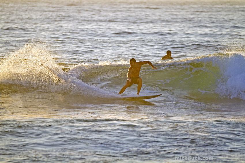 Bondi Surfer