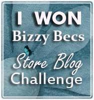 Bizzy Bec's Challenge Blog