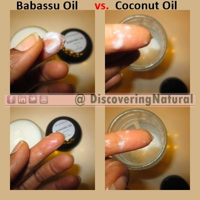 Babassu Oil vs Coconut Oil