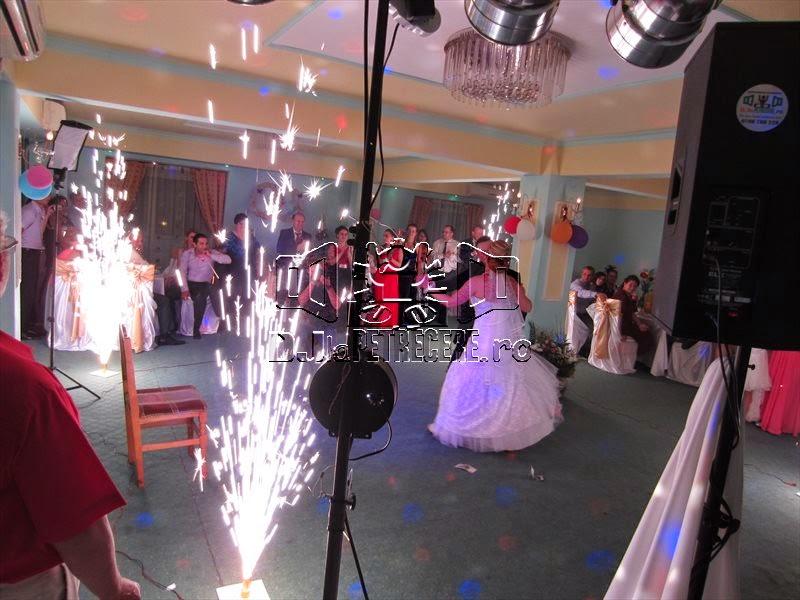 Nunta la Casa Pedro alaturi de DJ Cristian Niculici - 3