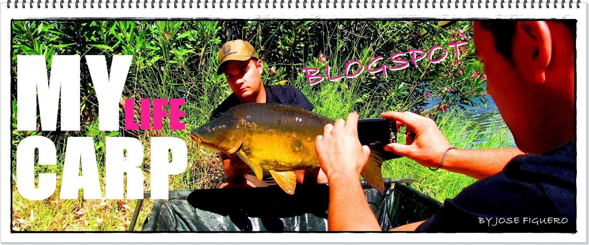 carpfishing My life carp