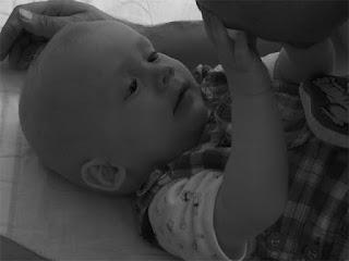 Cara Untuk Hamil Bayi Laki-Laki