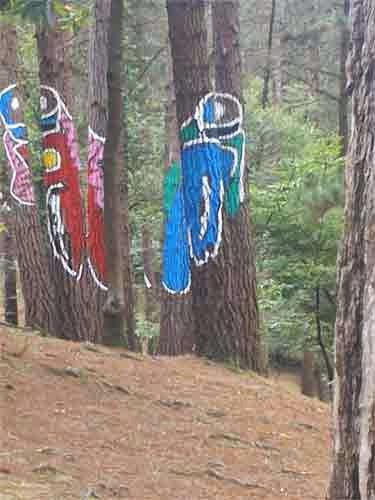 Detalle del Bosque de Oma