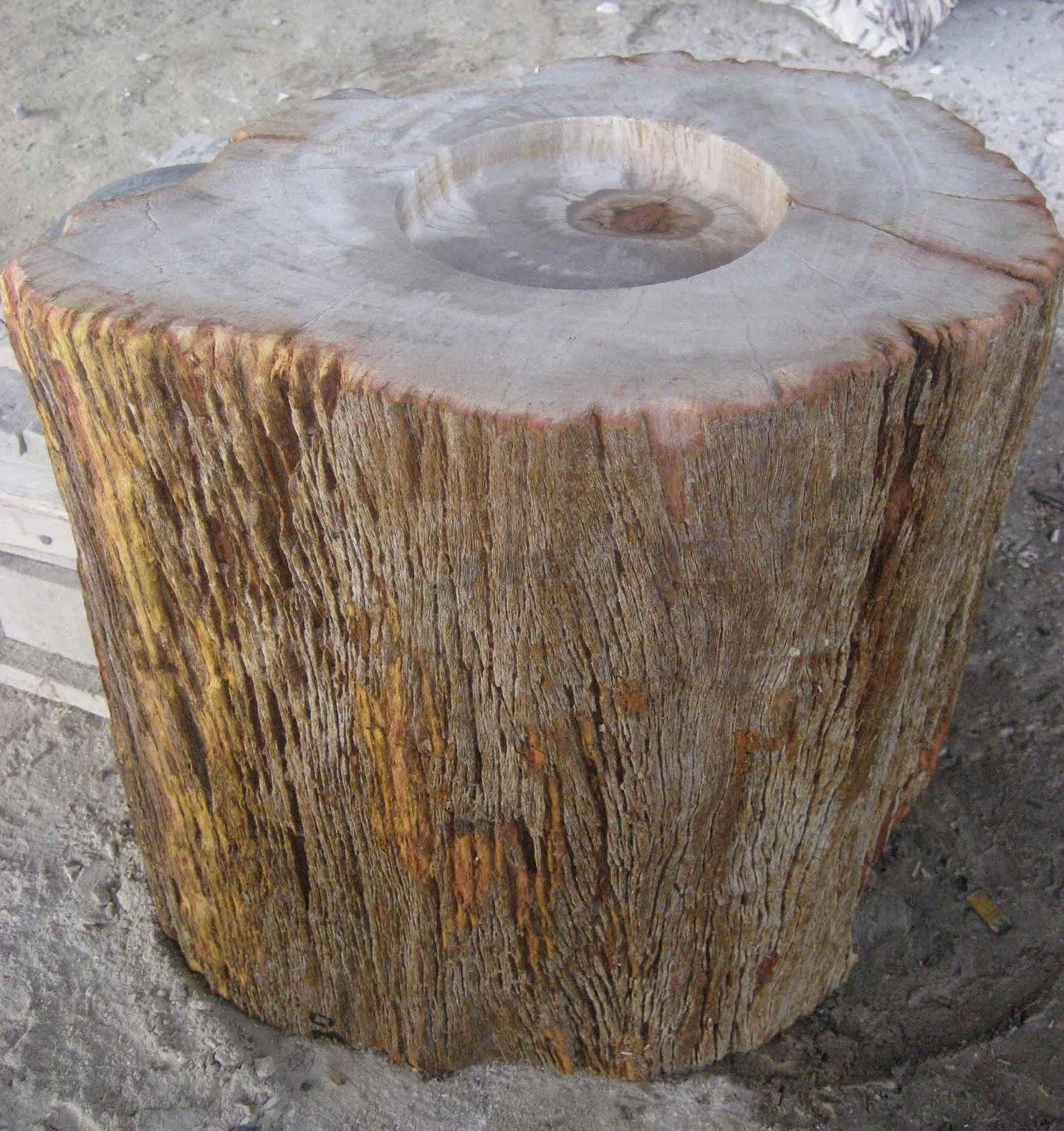 Petrified wood uk for Petrified wood furniture for sale
