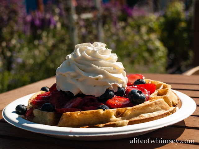 Waffles in the garden