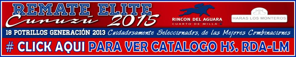 CATALOGO HS. RDA-LM 2015