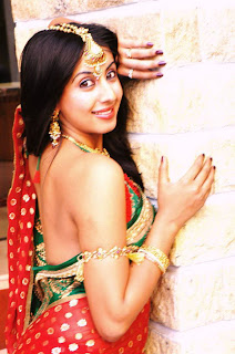 South Indian Actress Sanjana in Elegant Designer Saree for a Latest Picture Shoot