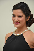 Richa panai at Memu Audio function-thumbnail-1