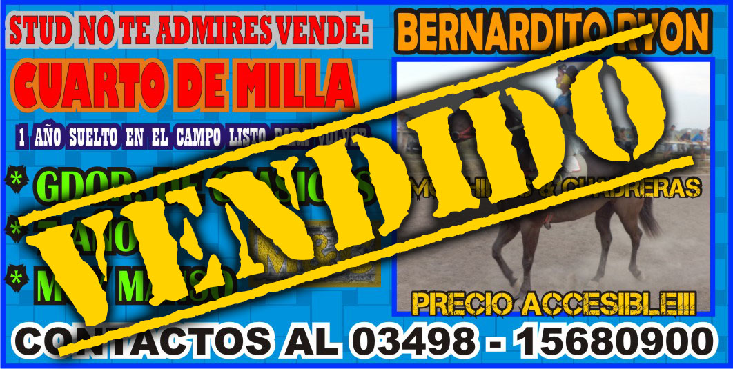 BERNARDITO - 01/06/15