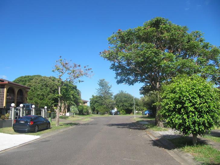 my street where I live
