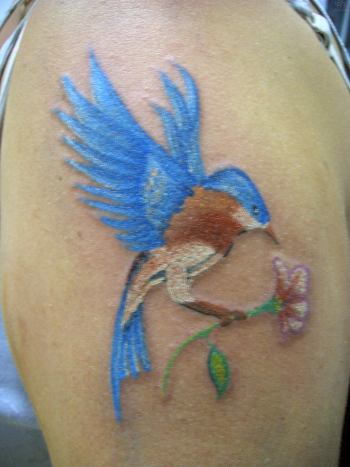 Tattoos Of Humming Bird Hummingbird Tattoo Pictures