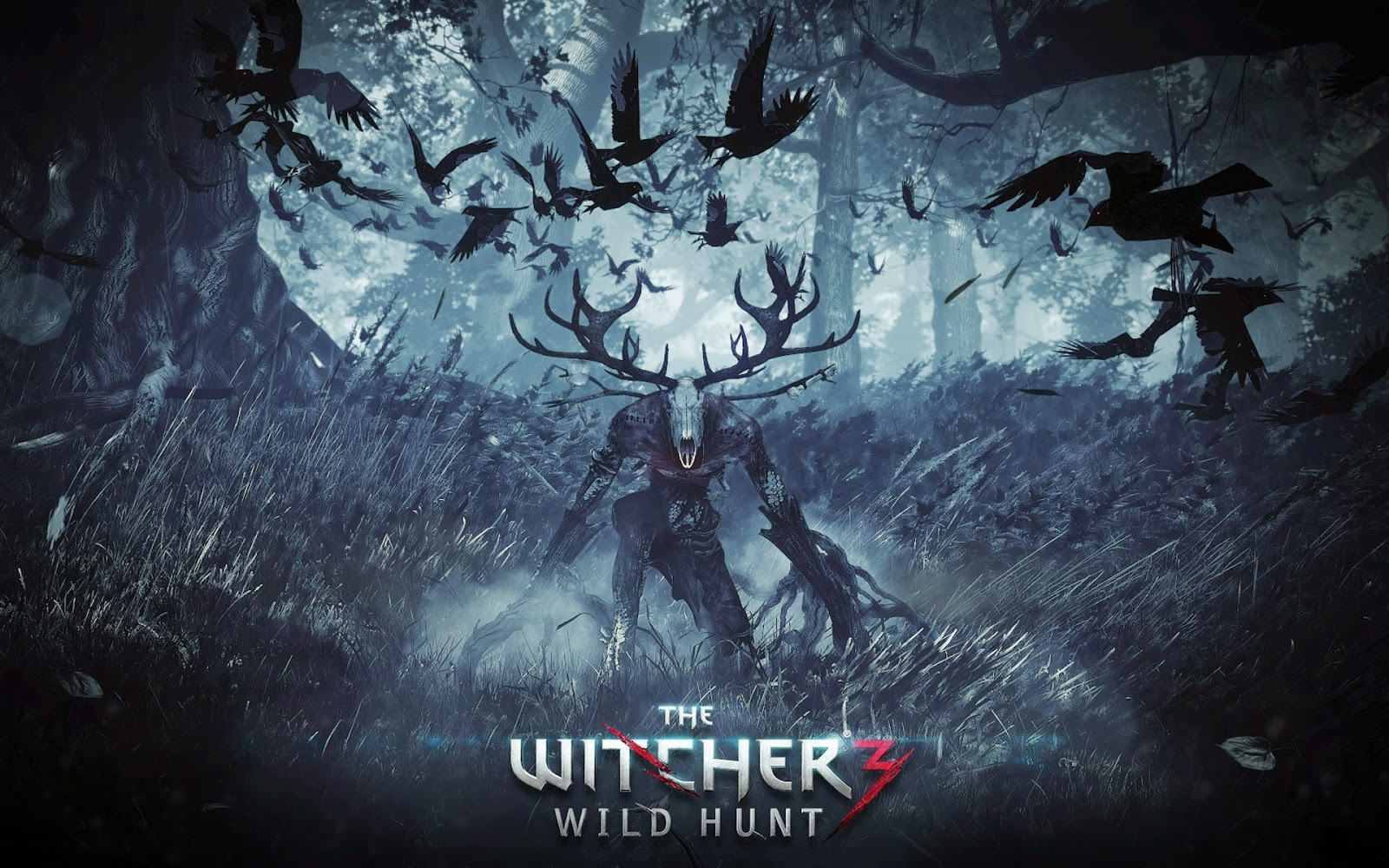 Witcher 3 Game