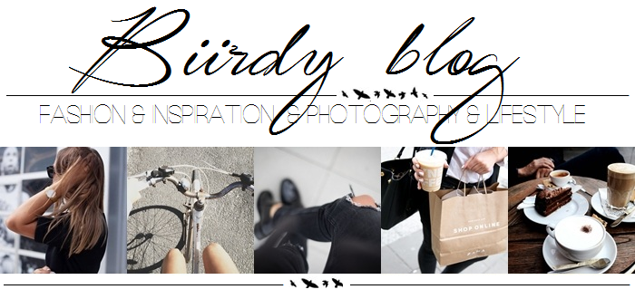 Biirdy blog