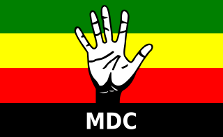 Movement for Democratic Change (Zimbabwe), ongoing
