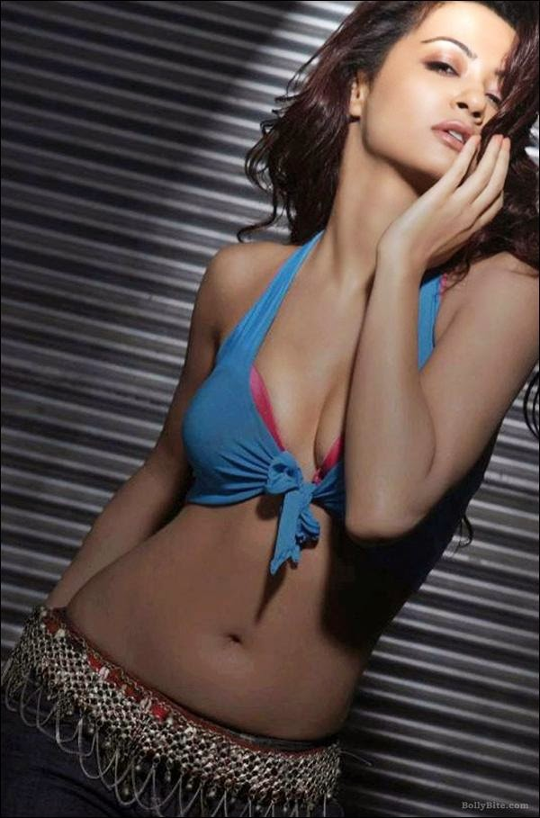 Hate Story 2 Heroine Surveen Chawla Hot and Bold Cleavege HD Wallpapers