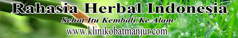 Obat Tradisional Herpes Manjur