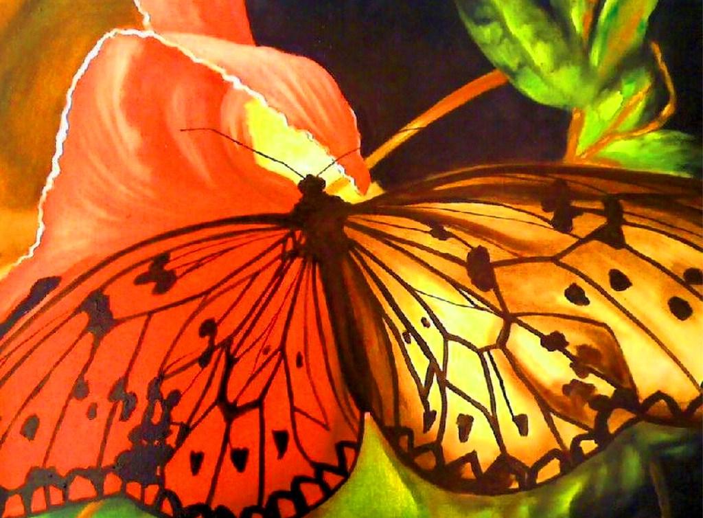 pinturas de mariposas abstractas cuadros modernos decorativos ...