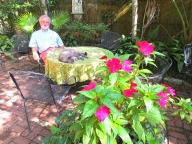 St Francis Inn's Gardeness (Our Own Garden Elf!) 30 12959322 St. Francis Inn St. Augustine Bed and Breakfast