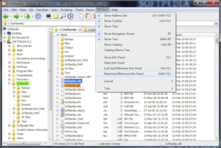 xyplorer download 2013