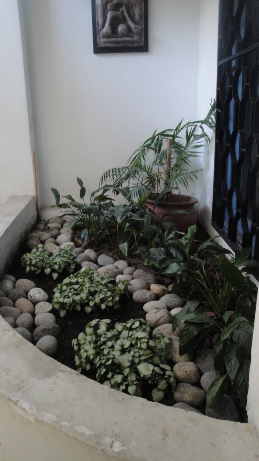 Reverdir Jardineria Y Paisajismo Cantero De Interior