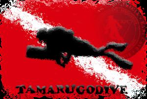 TAMARUGODIVE