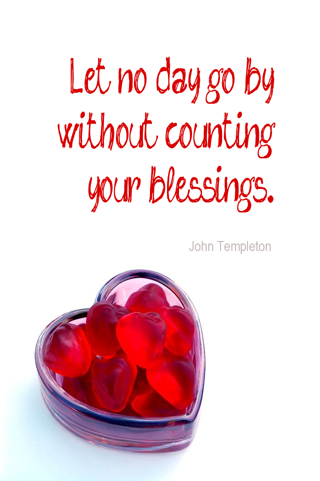 visual quote - image quotation for GRATITUDE - Let no day go by without counting your blessings. - John Templeton