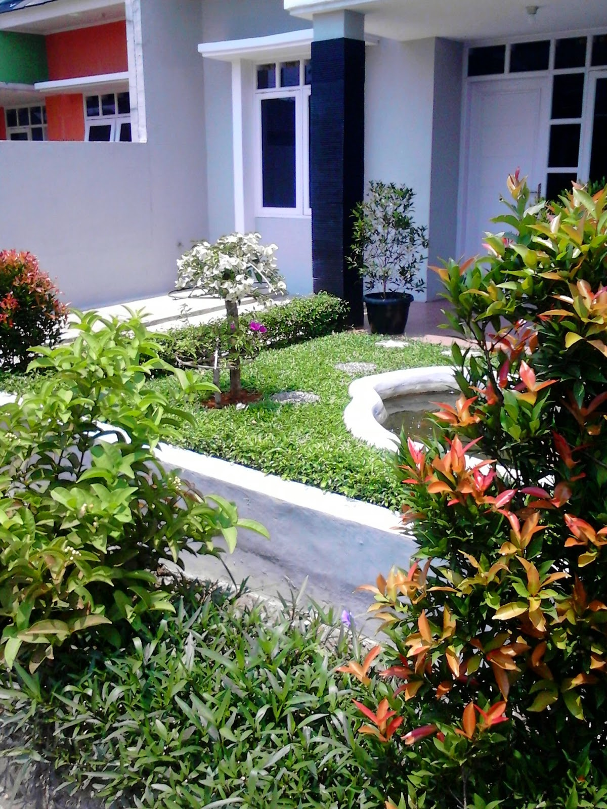 Jasa pembuatan taman rumahan | jasa desain taman | jasa tanam rumput | suplier tanaman