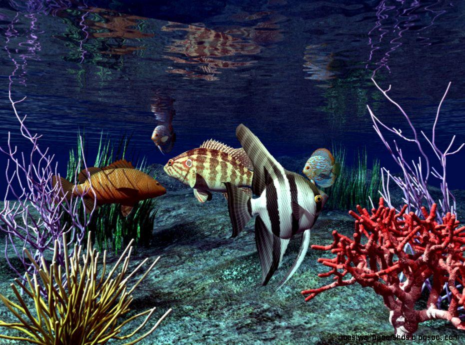 Free Live 3D Fish Desktop Wallpaper